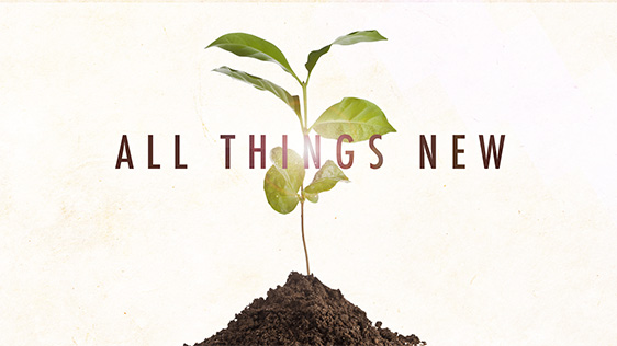 All Things New - Sermon Series & Sermon Graphics - Ministry Pass