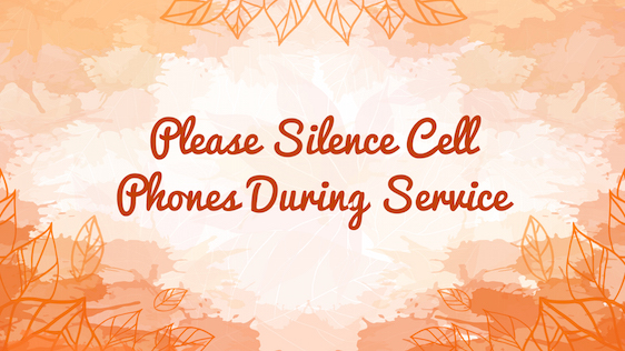Fall Service Bundle (Silence Phone)