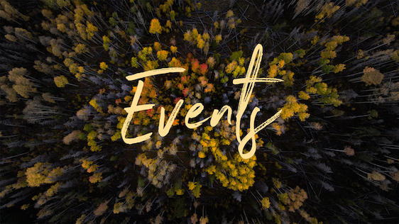 Fall Trees (Events)