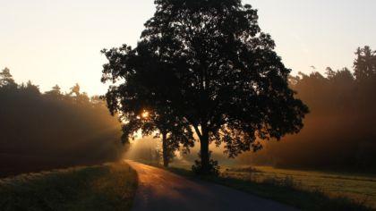 Spiritual Ancestry