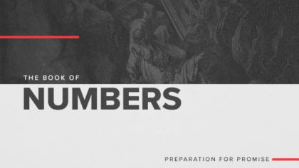 The Book of Numbers: Preparation For Promise