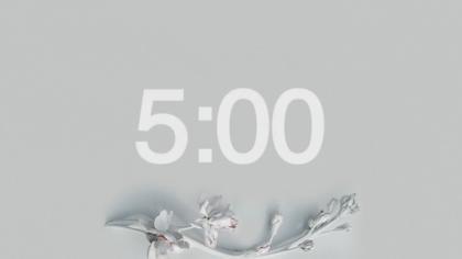 White Minimalist Countdown Video