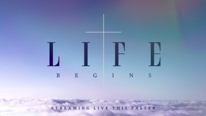 Streaming Bundle: Life Begins