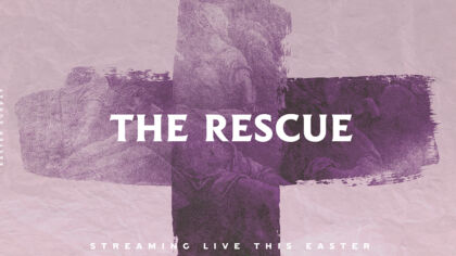 Streaming Bundle: The Rescue