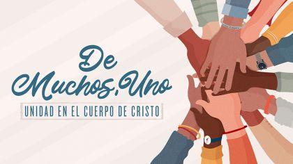De Muchos, Uno: Unidad En El Cuerpo De Cristo
